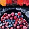 Dondurulmuş Meyveler